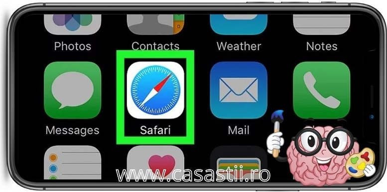 Safari web browser descarca vide de pe facebook iPhone