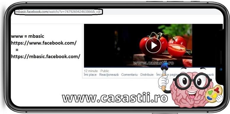 Inlocuire www cu mbasic pentru a descarca video de pe facebook